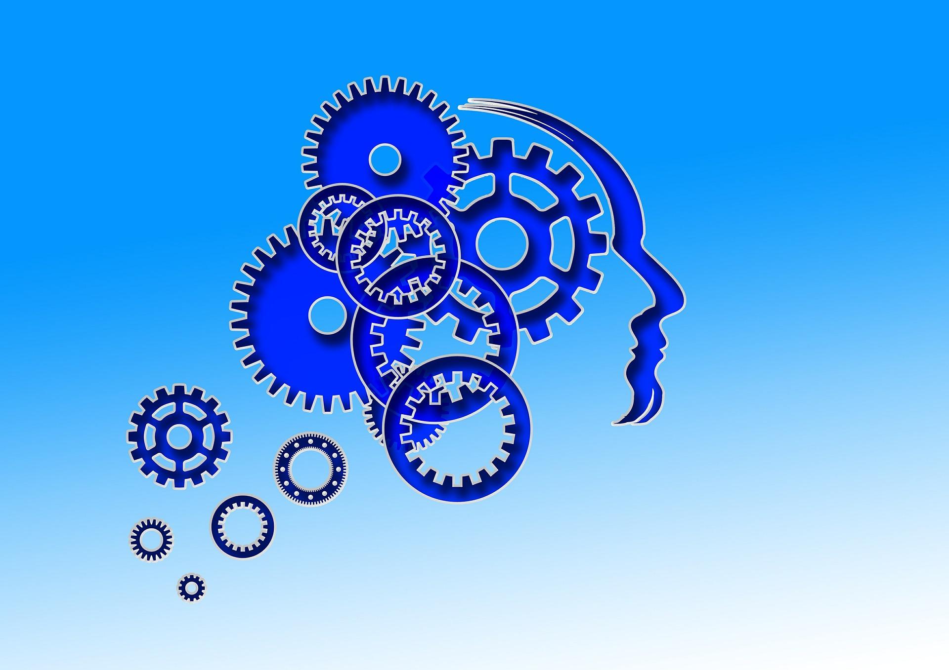 Course Image Zaburzenia w rozwoju psychoruchowym uczniów - diagnoza, metodyka prowadzenia zajęć korekcyjno-kompensacyjnych/Kitlińska-Król/L21